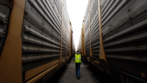 Man walking between rail cars